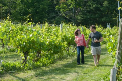 Nashoba Valley for apple picking and wine tasting