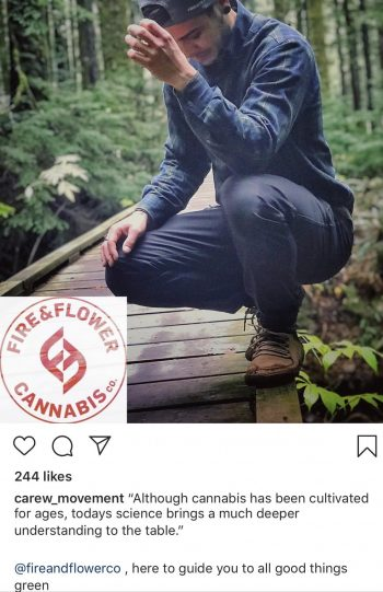 Fire and Flower Cannabis Influencer