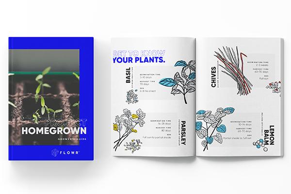 Flowr Growing Guide