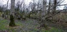 Riddrie Park Cemetery (A Glasgow Album: http://glasgowalbum.blogspot.co.uk)