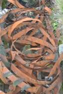 Ribbons of rusting metal
