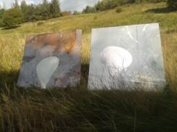 glasgow-wilderness-edgelands-art-or-rubbish5