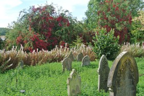 ludlow-lost-cemetery10