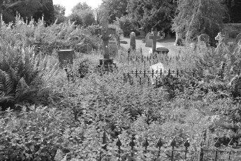 ludlow-lost-cemetery6