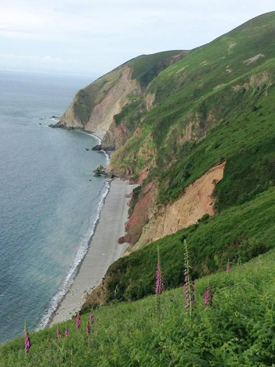 Cliff scenery on the South West Coast Path near Lynton