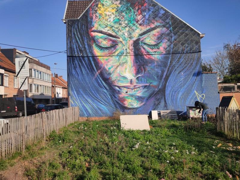 Streetart Roeselare