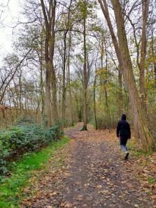 Palingbeek wandelroute