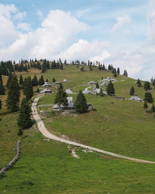 Gojska Planina