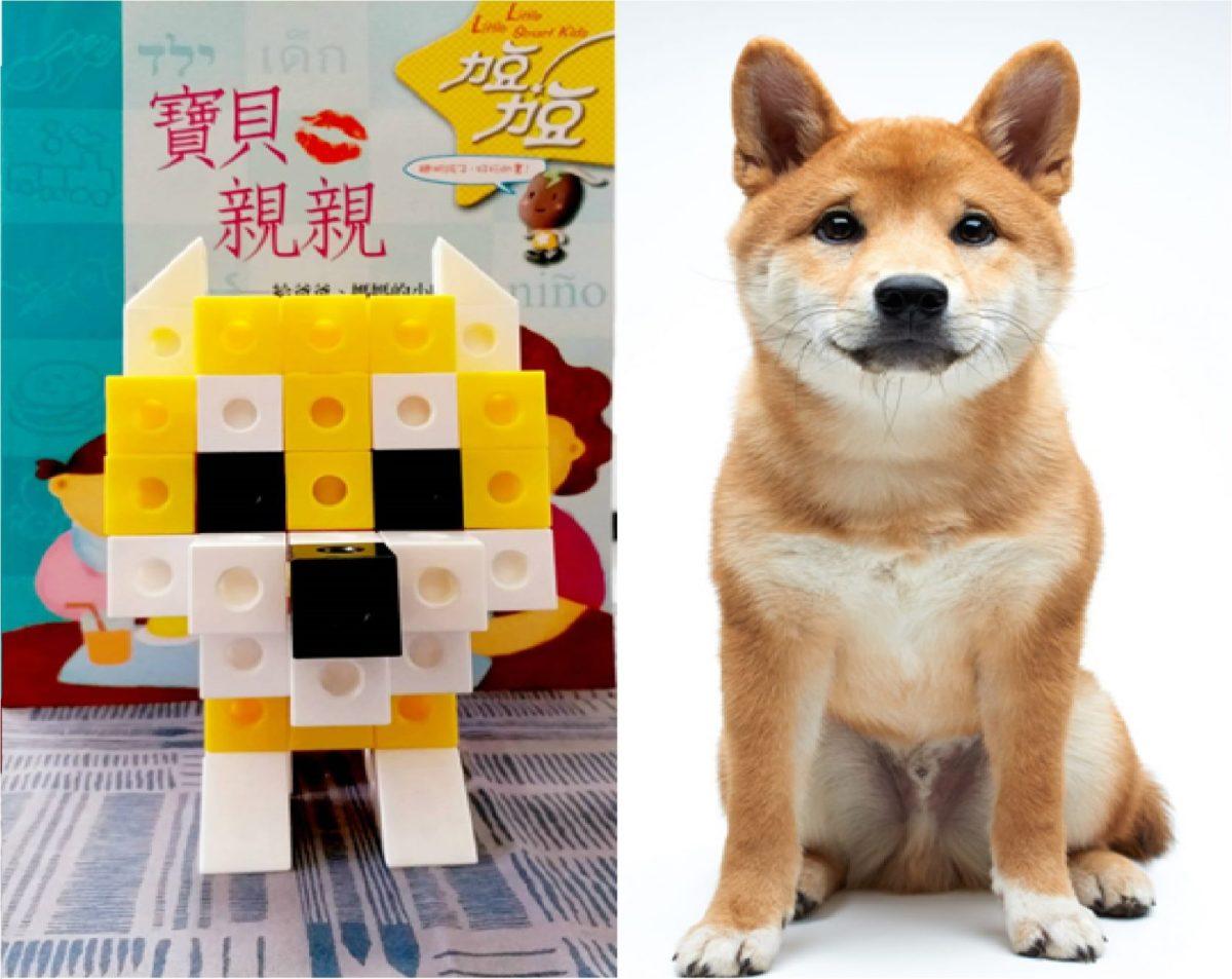 力豆力豆 | 教你用積木做出一隻柴犬!(影片)