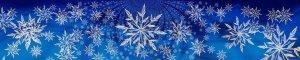 Snowflake Banner