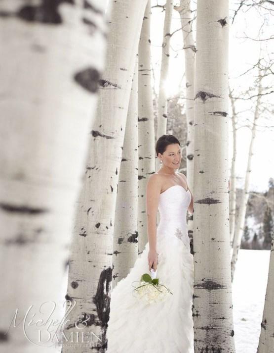 Fabulous Winter Wonderland Wedding Dresses Ideas38