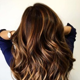 Elegant Dark Brown Hair Color Ideas With Highlights05