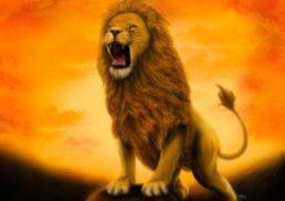 Bold Like A Lion
