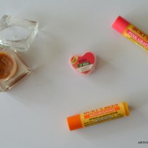 lip balm review of the nature's co. and burt's bees