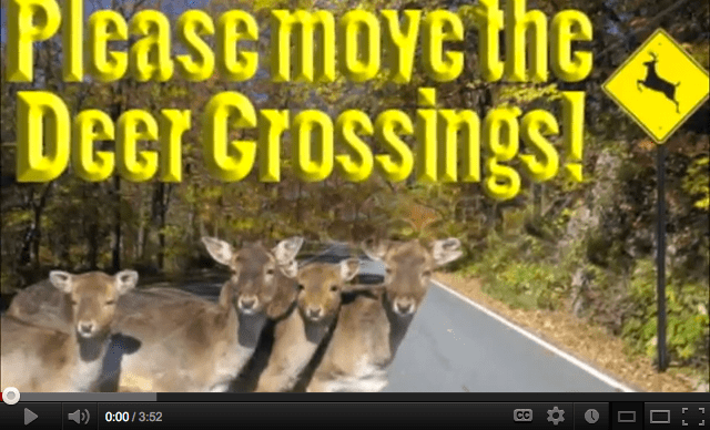 Please move the deer crossings!
