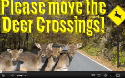 Please move the deer crossings!