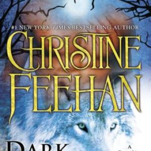 Book Review-Dark Wolf