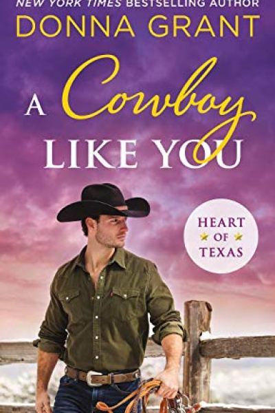 Book Review-A Cowboy Like You by Donna Grant