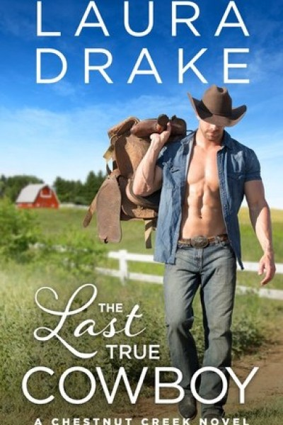Book Review-The Last True Cowboy by Laura Drake