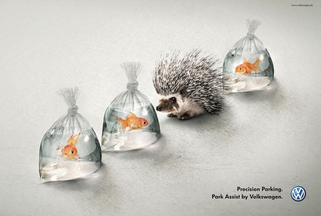 Volkswagen ad showing a porcupine in between bags of goldfish.