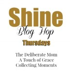 Shine Blog Hop #96