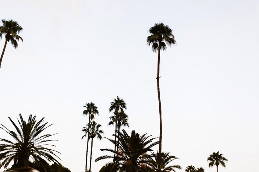 avalon-hotel-palm-springs-wedding-125
