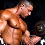 Best 5 Workouts for Building Muscles