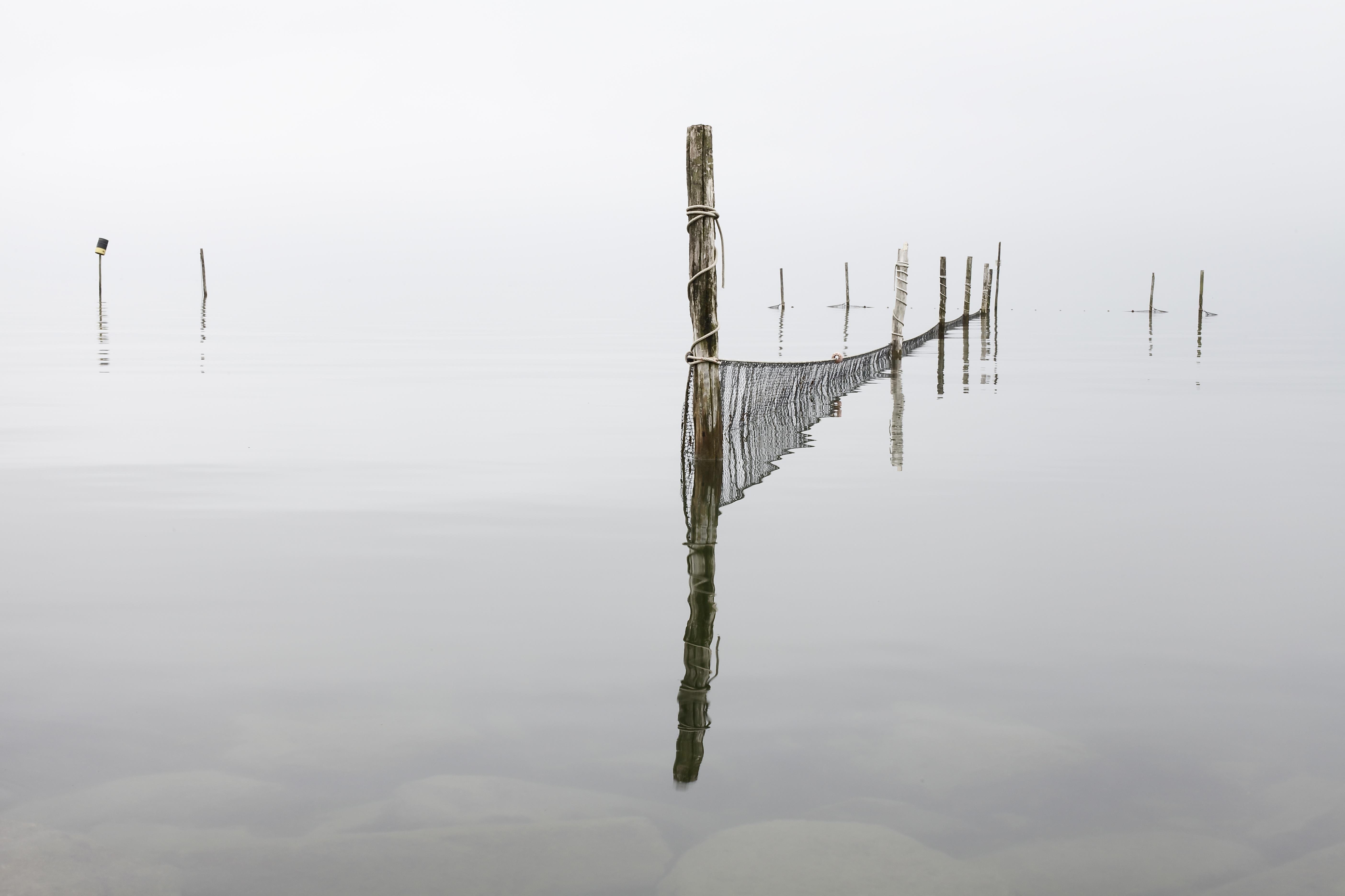 Soul's Reflection