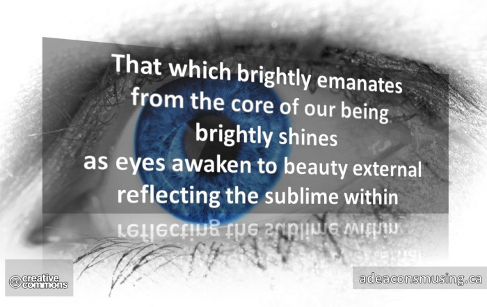 Sublime Within