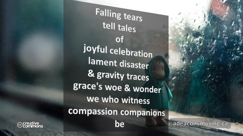 Compassion Companions