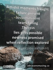 Reflection Explored