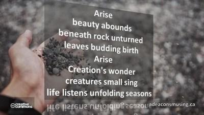 Unfolding Seasons