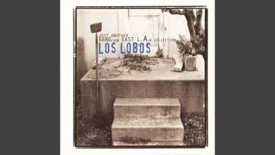 Los Lobos (River of Fools)