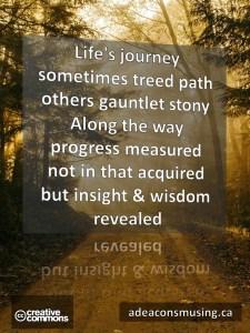 Insight & Wisdom