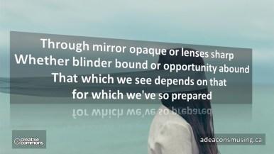 What We Perceive