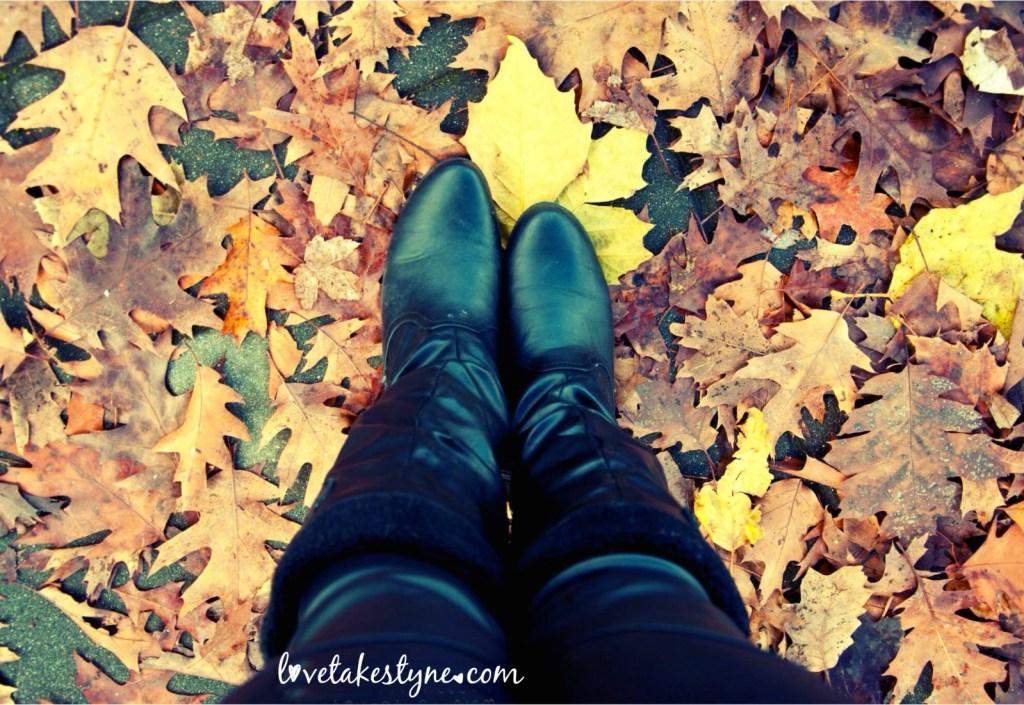 Toronto Canada fall