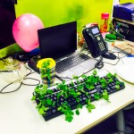 {Funny Friday} Office Pranks