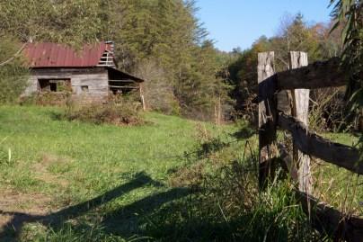 Road to Falls Branch Falls, Benton McKaye Trail, Cherry Log, GA