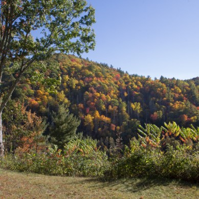 Fall colors, overlook, Cataloochee Valley, Great Smoky Mountain National Park, NC