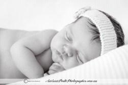 Adelaide Birth Photographer--16