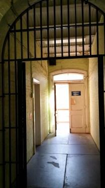 Inside Z Ward