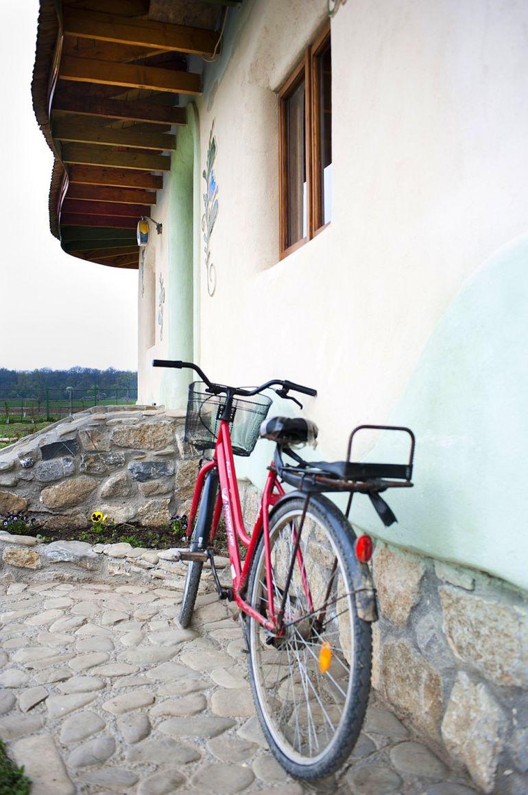 adelaparvu.com despre casa din chirpici la Ciolpani, Poiana Florilor, designer Elena Vasiliu arh. Raluca Suru, Foto Dragos Boldea (65)