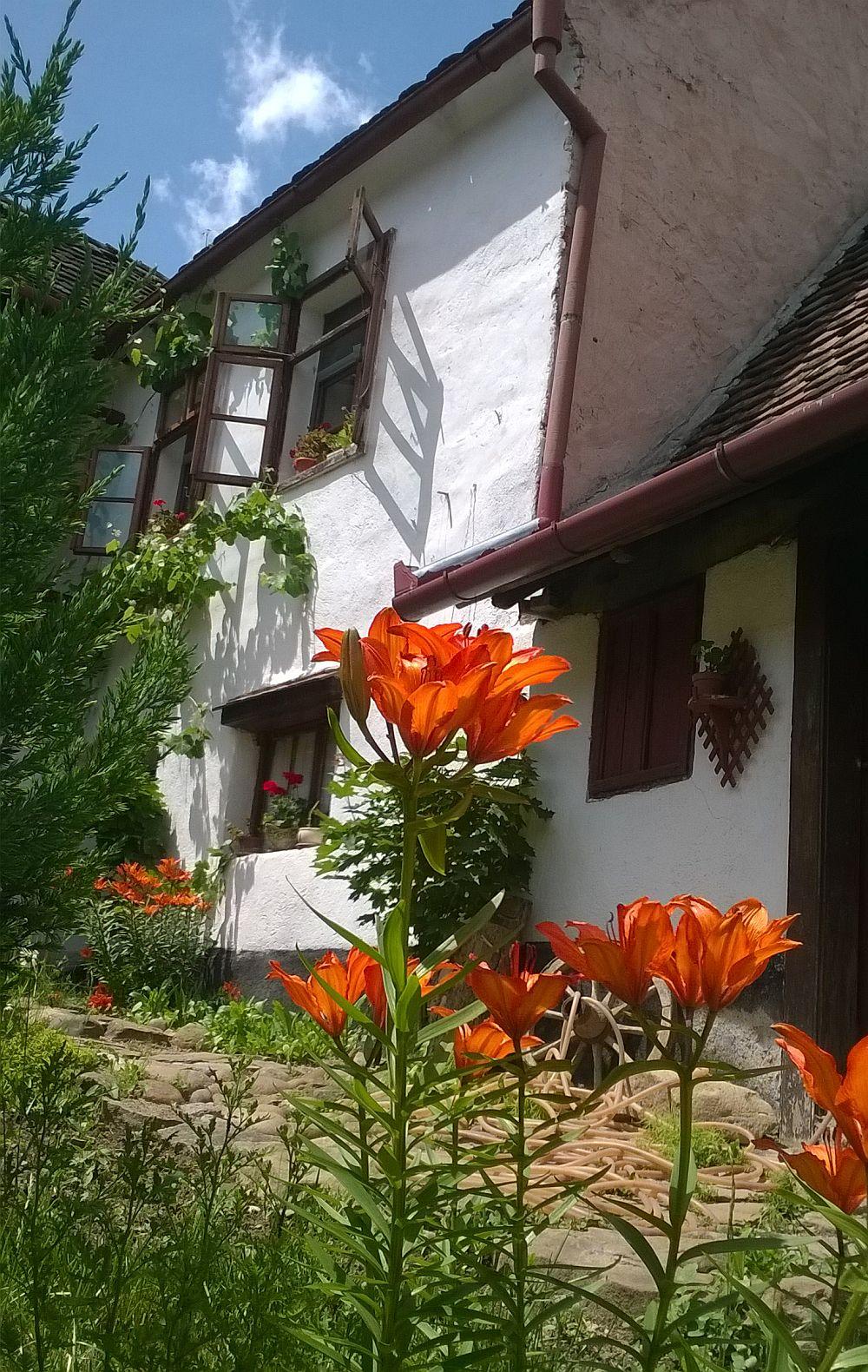 adelaparvu.com despre pensiunea Casa cu Zorele, case traditionale transilvanene, bedandbreakfast Crit, Transilvania, Romania (32)