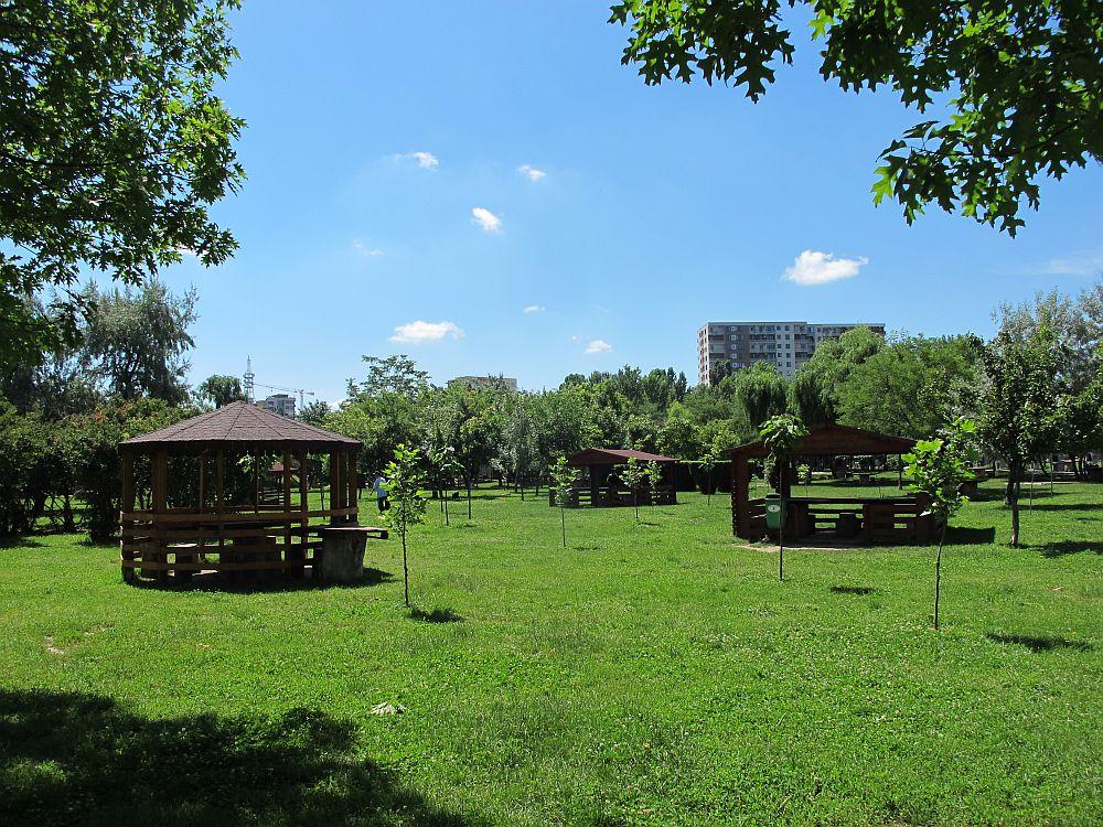 In centrul imagini vezi blocul de la The Park