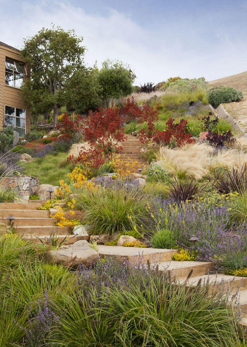 Foto Arterra Landscape Architects