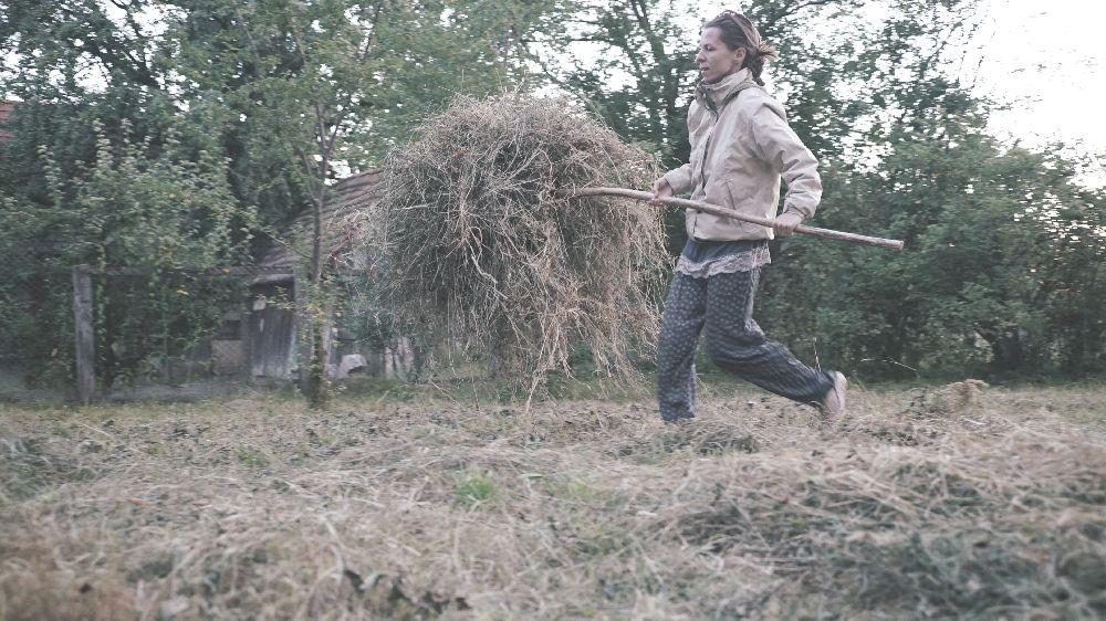 adelaparvu.com despre Alexandra Teodor si Stefan Carstea peisagistii care s-au mutat la tara in Cartisoara (22)