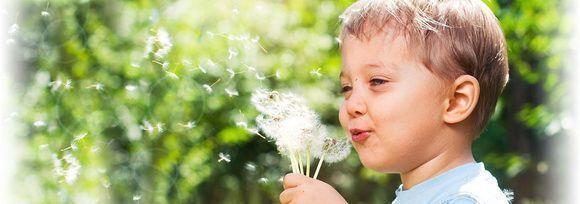 alergia-biodescodificcic3b3n