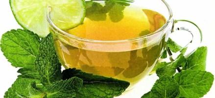El Té Verde como Suplemento Dietético para Bajar de Peso