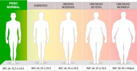 Sencillos pasos para cálcular el índice de masa corporal