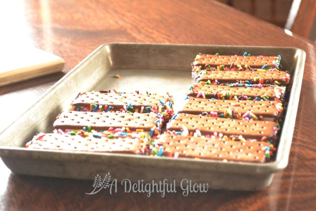 Ice Cream Sandwiches with Sprinkles (8)